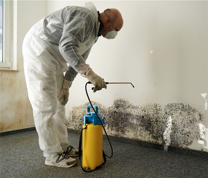 Specialist using protective gear while removing mold