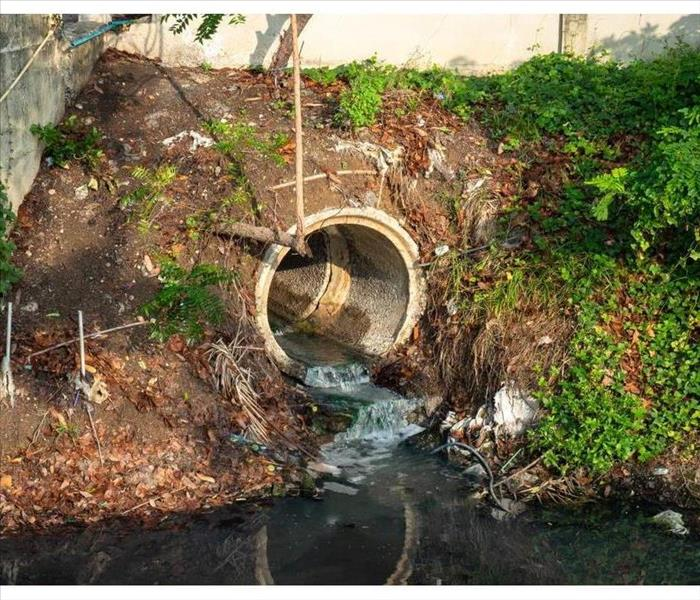 Sewage or domestic waste water or municipal waste water that is produced by a community of people.