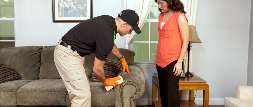 Joliet, IL carpet upholstery cleaning