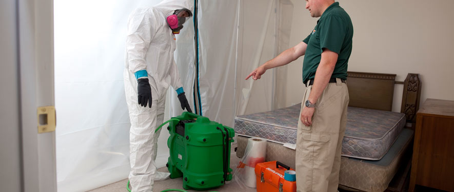 Joliet, IL mold removal process